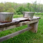 Texas woman leaves buckets of food for Bigfoot family – Hartford Top News