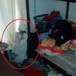 Family attacked in their sleep by demon – Mirror Online