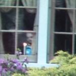 Ghost appears in window