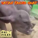 Satan Faced Goat Shocks Village