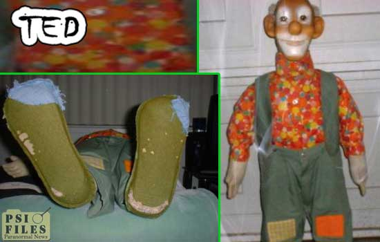Ted the haunted doll