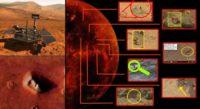 Strange Mare images