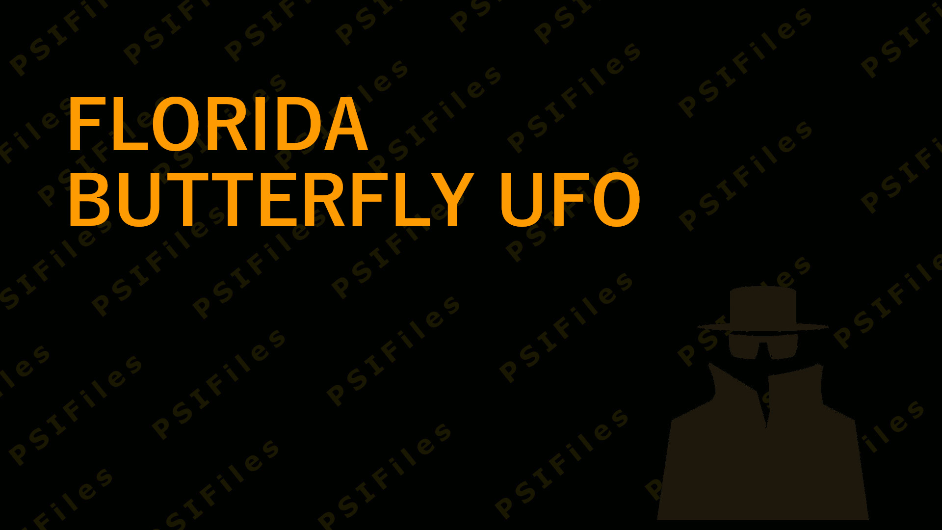 Florida Butterfly UFO